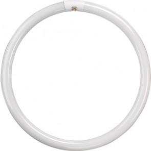 T9 Circular Tube - 32W